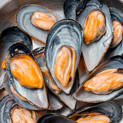 Why Mussels Make the Most Sustainable Seafood Choice