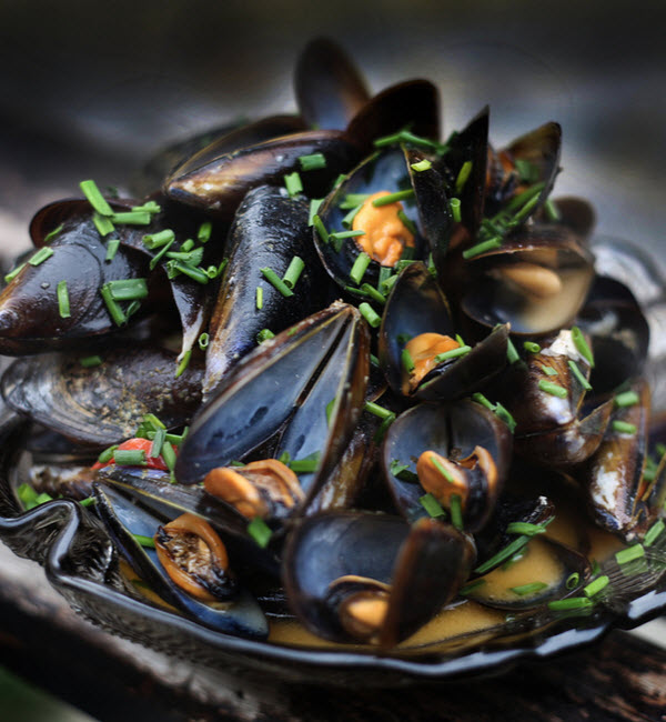 Plate of mussels in seafood sauce in the foreground with coriander on wood
