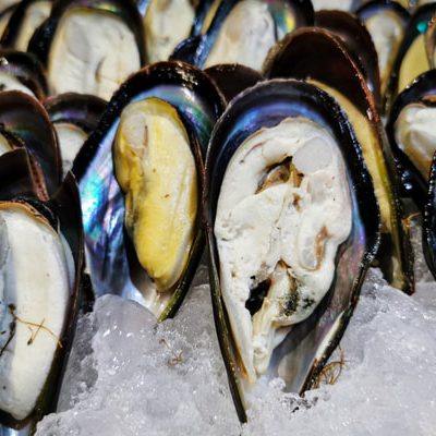 The State of International Mussel Exports
