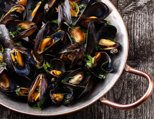 Cooked Mussels in a pan