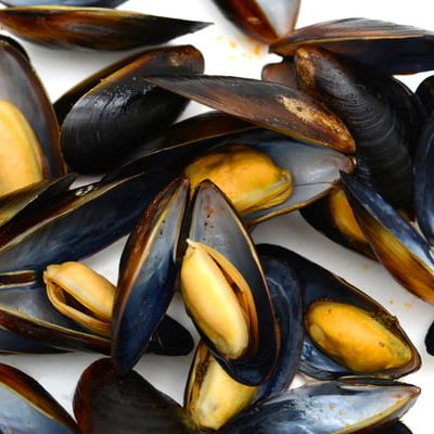 Sustainable mussels – good eating begins at home