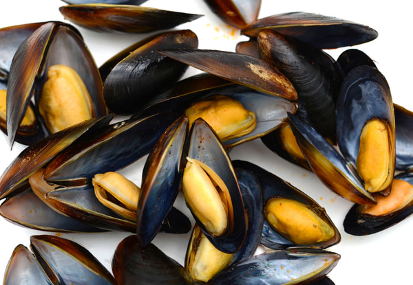 Fresh mussels isolated on white